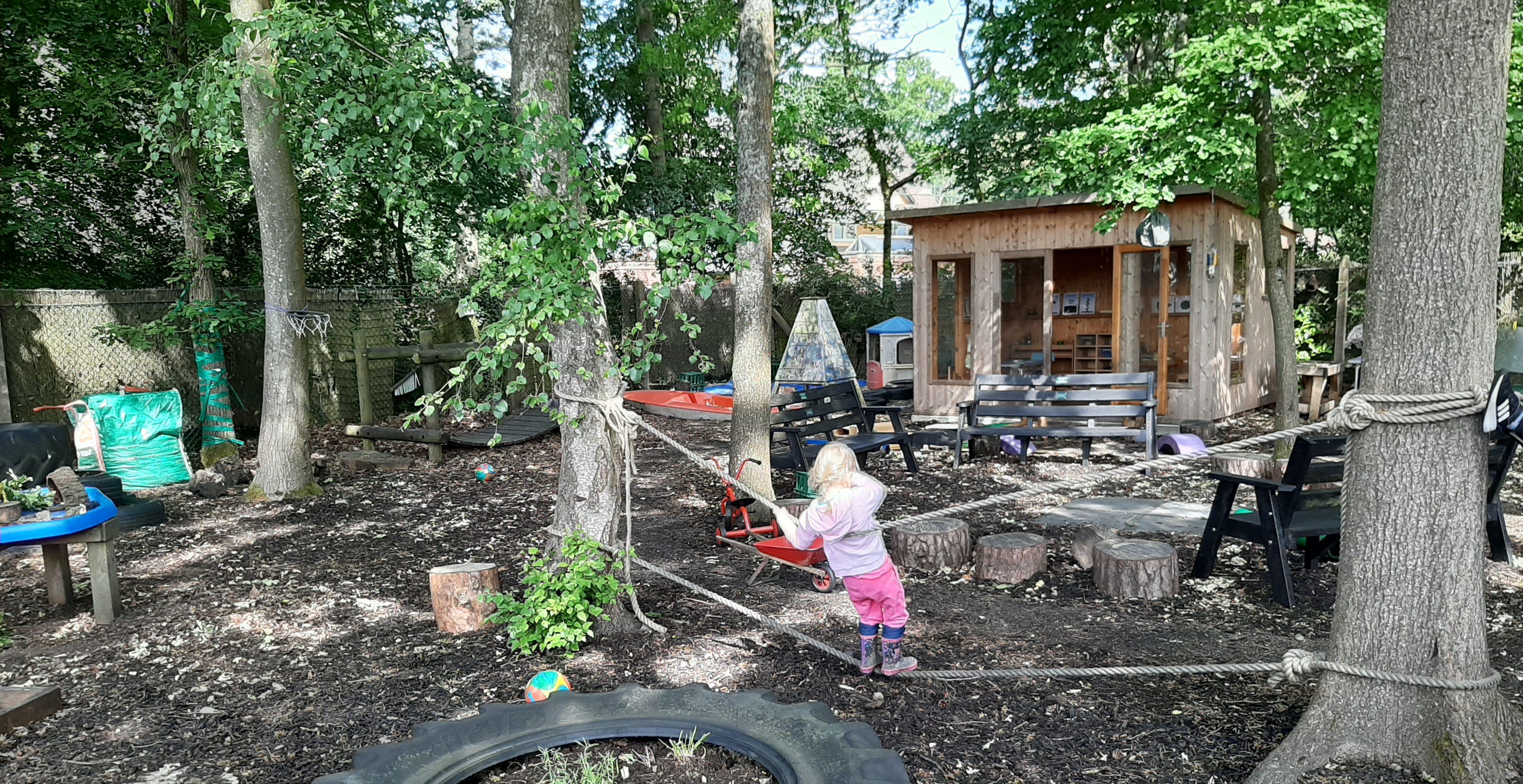 our wonderful garden